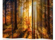 Paraván - Autumn Awakening II [Room Dividers]